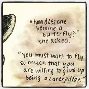 d2fdabf5b014b5e22f768b57a08b362d--flying-quotes-transformation-quotes