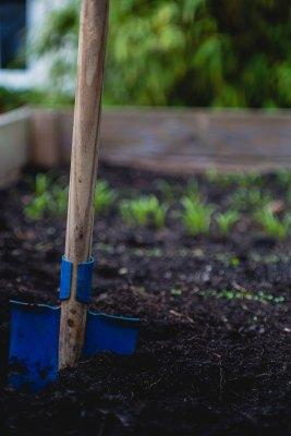 A Garden Beckons...