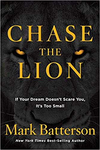 Chase The Lion