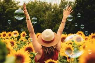 Dreamers Harvest Joy