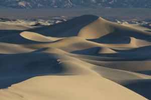 adventure arid dawn desert
